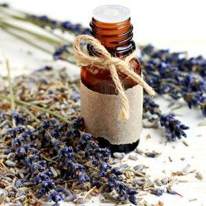 huile essentielle de lavandin pour baumes de sebastopol